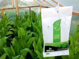 the co2 bag grower 1x produkte tamar growshop. Black Bedroom Furniture Sets. Home Design Ideas